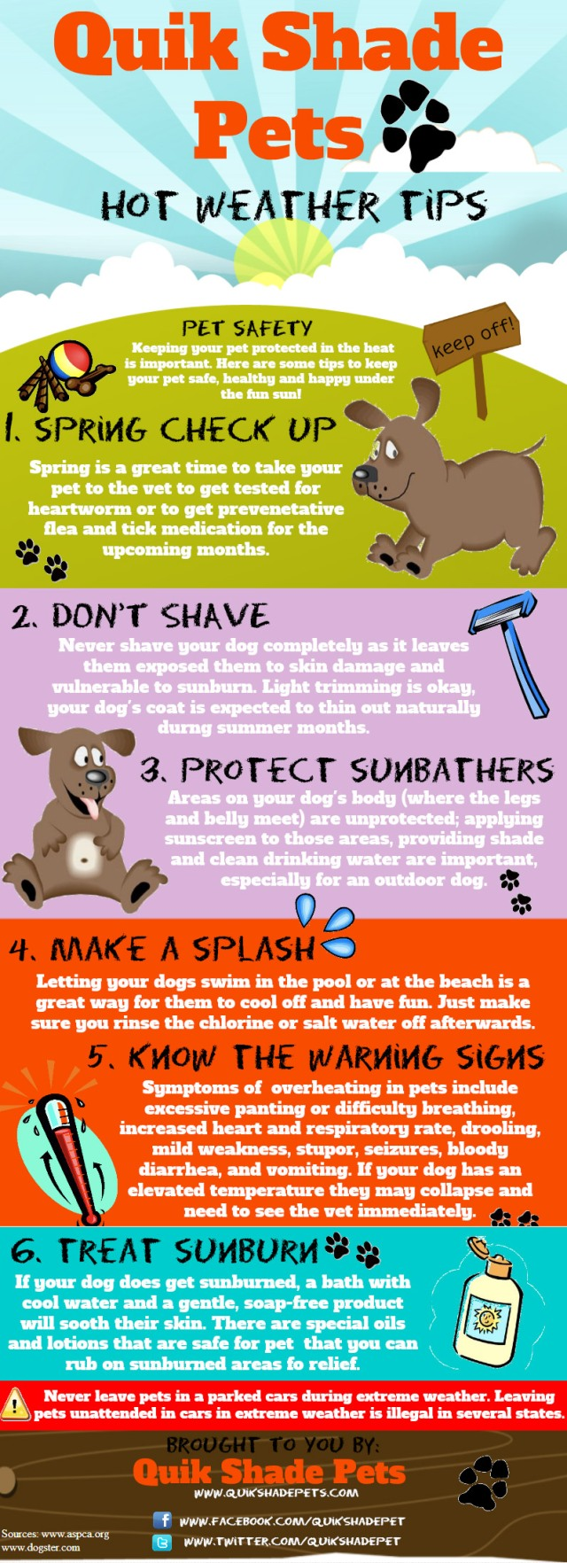 hot-weather-tips-for-your-dog primal canine dog training