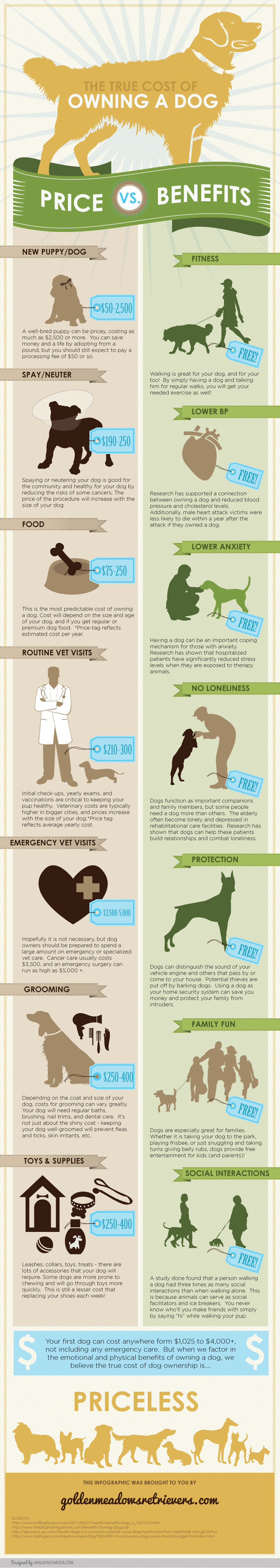 Bay Area Dog Training Primal Canine -The True Cost of Owning a Dog
