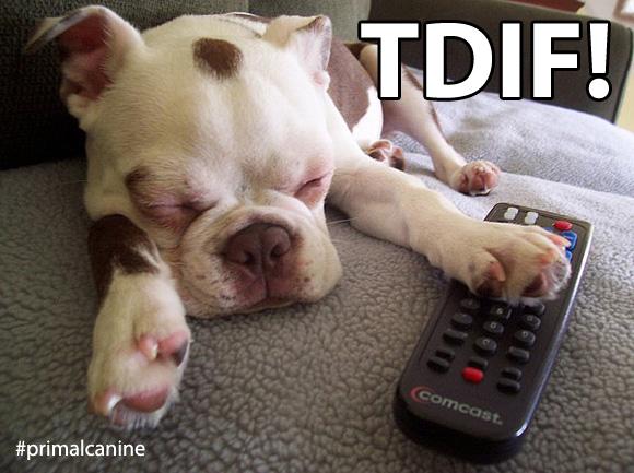 tdif bay area dog training