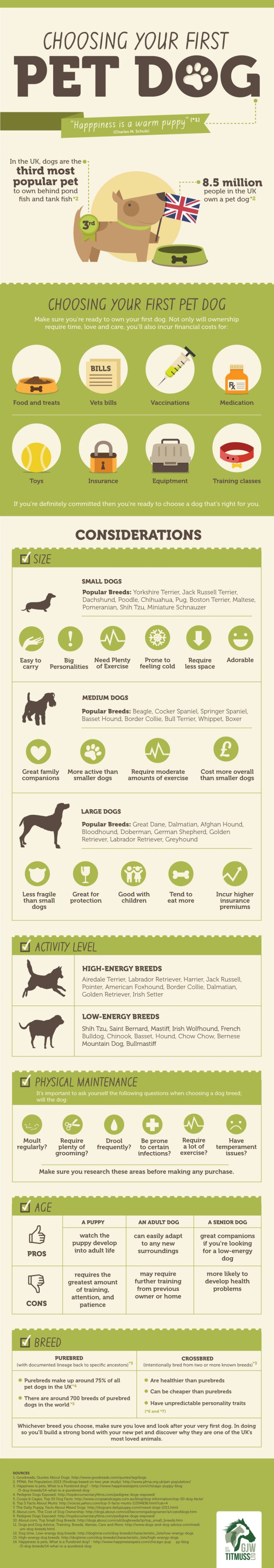 primal canine choosing your first dog infographic