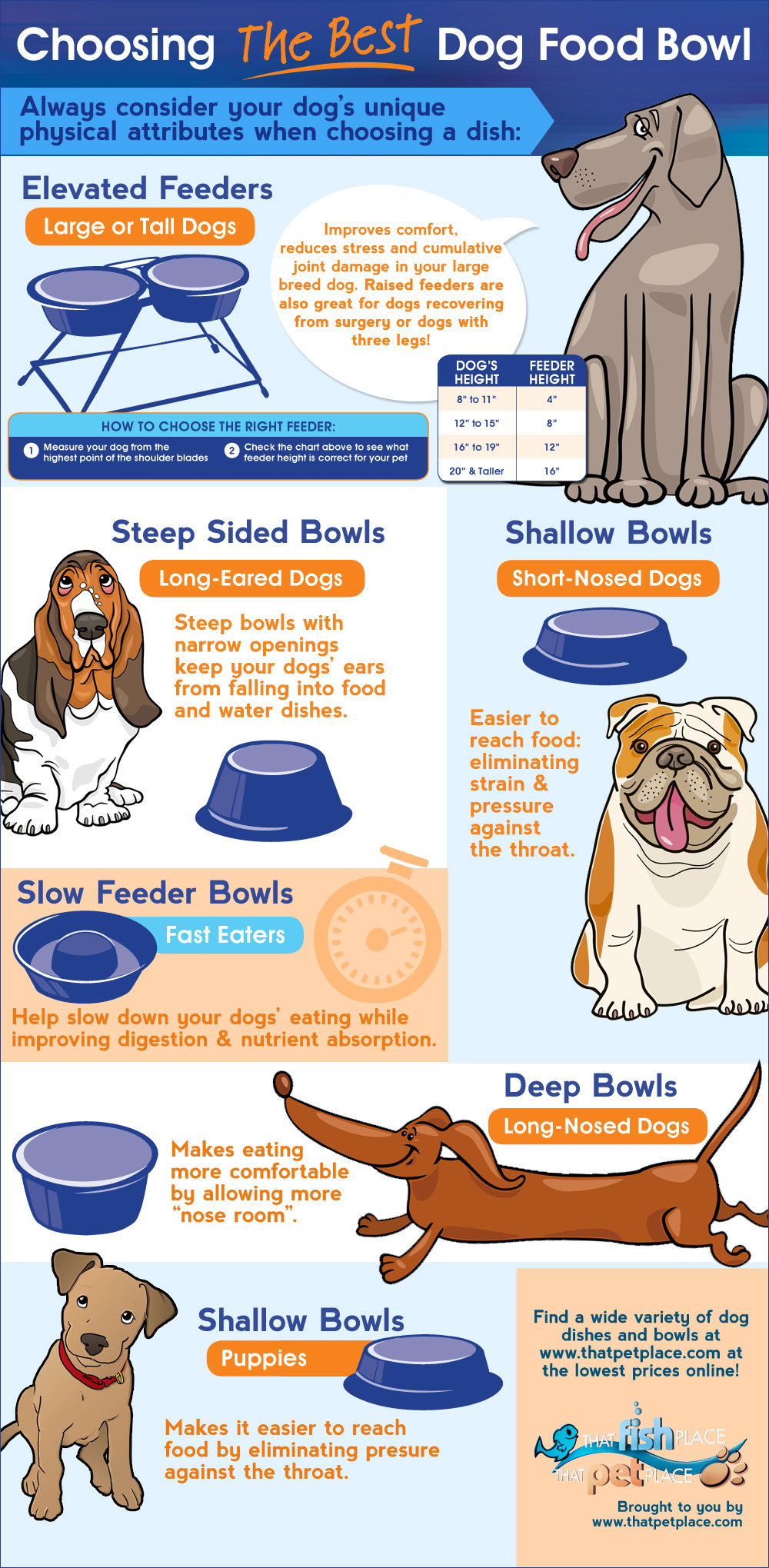 how-to-choose-the-best-bowl-for-your-dogs-breed_ primal canine dog training